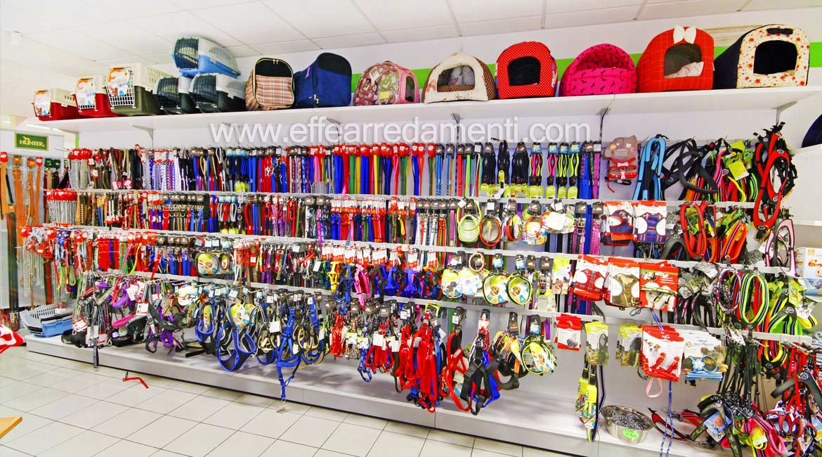 Equipped wall displaying leashes and collars