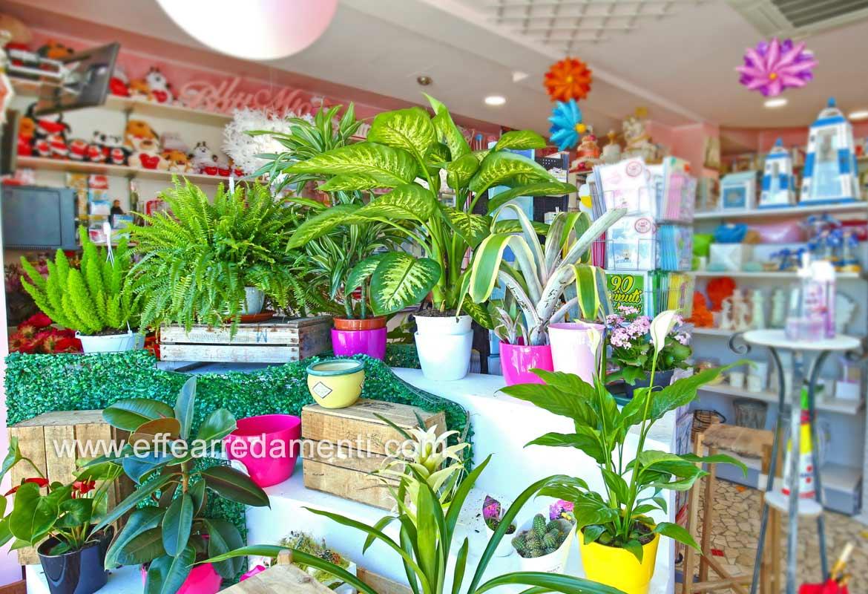 Arredamenti Per Negozi di piante e Fiori